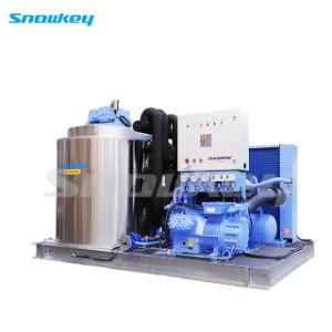 1T/D-10T/D Flake Machine à glace pour le refroidissement de transformation des viandes