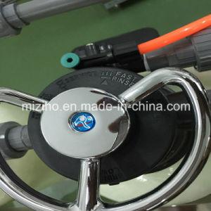 Macchina del filtrante di acqua di trattamento delle acque del RO di osmosi d'inversione