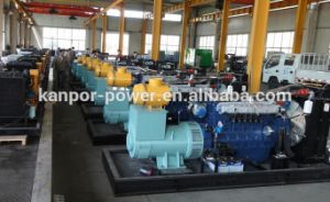 El Gas Natural/generador de energía diesel de biogás