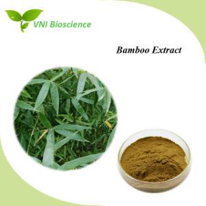 Certifiée ISO SGS extrait de bambou/extrait Bambusoideae/Bamboo P. E
