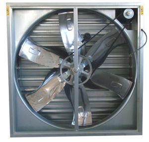 Ventilatore fissato al muro di ventilazione/ventilatore oscillato del maglio a caduta libera