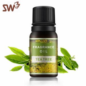 OEM Hortelã natural do óleo essencial de aromaterapia óleo perfumaria