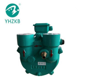 0,55 kw bague d'eau pompe à vide pour autoclave stérilisateur