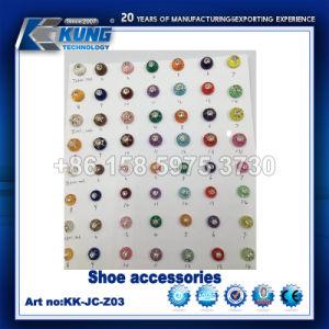 Accessoires pour chaussures