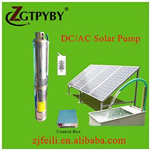 Deep Borehole Pump with Solar Panel DC Solar Deep Well Water Pump