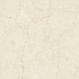 Taille glacée rustique de carrelages de porcelaine dans 60X60cm (E6055)