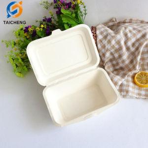 Bagaço de cana-de-Caixa de alimentos