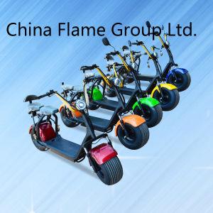 Bicicletta elettrica con la sede della sospensione 2 di F/R e l'indicatore luminoso posteriore