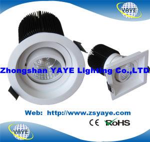 Yaye Design mais recente de 2016 CE/RoHS 7W/10W/12W LED SABUGO luz para baixo
