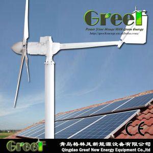 Turbine-Generator WegRasterfeld System des Wind-3kw mit Controller& Inverter& Batterie