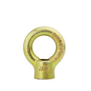 Matériel de l'anneau de levage en acier inoxydable forme Eyed Écrou fileté