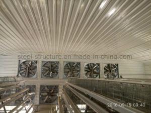Estrutura de aço leve Galpão de frango de aves de capoeira nas Filipinas
