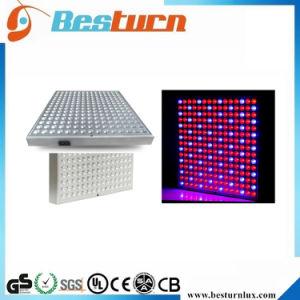 正方形45W完全なスペクトルLEDのプラントはライトを育てる