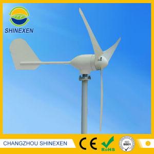 12V 24V 300W горизонтального ветра генератор