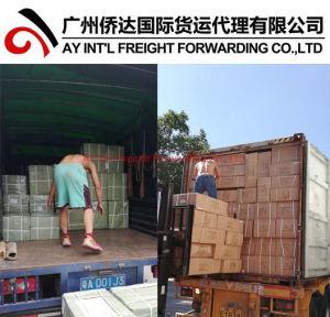 Professional Services de courrier express (DHL, TNT, UPS, FedEx, EMS, SF) de la Chine au monde entier