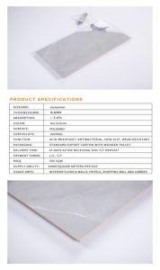 Vidros Duplos Matt Molde 300x600 Papel de parede de azulejos de parede de cerâmica para banheiro e cozinha vendas de fábrica