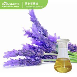 Huile essentielle le meilleur prix Huile Essentielle de Rose naturelle pour le massage spa-aromathérapie Qualité naturelle pure Huile essentielle de lavande