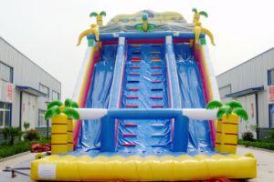Parc aquatique gonflables géants glissoire d'eau pour les adultes et enfants