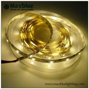 Blanco de 5050 CCT Adjusble doble TIRA DE LEDS
