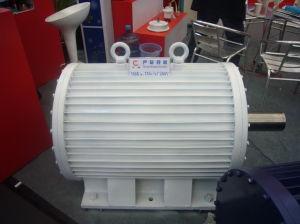 Generator-Horizontales Dauermagnet200kw/350rpm (FF-200KW-350RPM)
