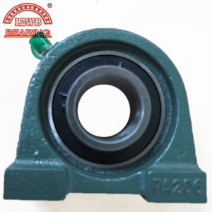 Chinesisches Manufactured Pillow Block Bearing mit Enough Experience (UCPA206)