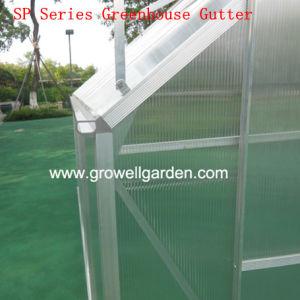 Growell 8 ' serra di X 10 ' (SP8)
