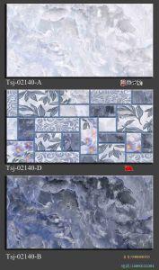 3D Inkjet die Ceramische BinnenTegel 250X500mm schilderen van de Muur
