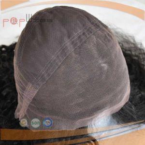 バージンのRemyの毛の完全なレースのかつら(PPG-l-0510)