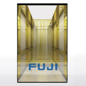 Fuji Home Elevator Hospital Lift Passenger Elevator for Sale