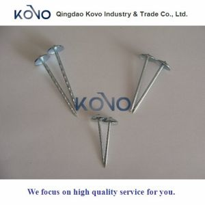 """2 """" Smooth Shank를 가진 *10bwg Roofing Nails"""