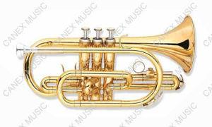 Cornet d'entrée de gamme (CO-255AL)/cornet instruments en laiton