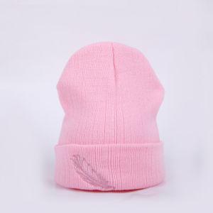 관례에 의하여 수를 놓는 뜨개질을 한 겨울 온난한 베레모 모자