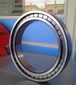 Cuscinetti cilindrici SL045008PP del complemento completo di riga del doppio del cuscinetto a rullo