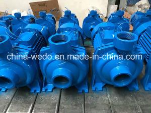 Hf/5b электрический центробежный водяной насос для орошения