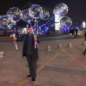 Zeichenkette-transparenter Ballon der Ballon-Partei-Dekoration-LED