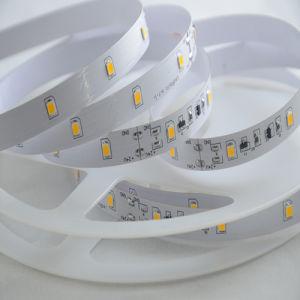 21W/M SMD5630 24V DE CORRIENTE CONSTANTE TIRA DE LEDS