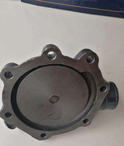 Weichai Deutz 226b/Wp6のディーゼル機関のための遠心ポンプ12159770