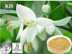 Alta qualidade de Neohesperidin Natural 98%