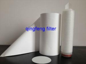 L'eau de 0,45 um PSE Microfiltration Purifer membrane filtre pour la filtration de l'eau