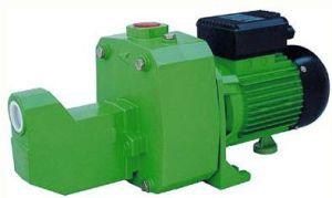 Жиклер Self-Priming удалите водяной насос для глубокого а также насосы (DP-505,DP-750)