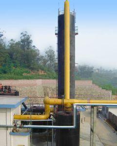 De Gasvorming van de steenkool