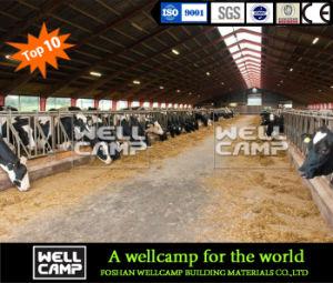 Wellcamp barato de la luz de la construcción de establo Estructura de acero con bajo coste