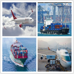 Aria della Cina/mare/agente di trasporto espresso da Shenzhen/Xiamen/Guangzhou/Schang-Hai/Ningbo/Fuzhou nel Pakistan