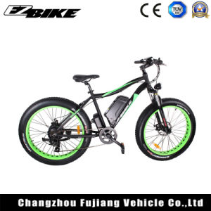 Energía verde Electric bicicleta de montaña con un alto rendimiento E-bicicleta