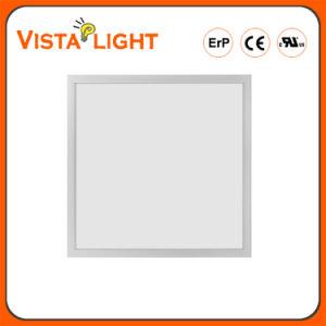 Indicatore luminoso di comitato bianco di AC100-240V LED per le sale per conferenze