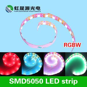 Una striscia flessibile 60LEDs/M di 5050 RGB+Ww LED per illuminazione decorativa