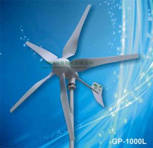 1000W de Turbine van de wind