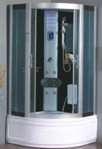 Sala de ducha de vapor computarizado (9006)