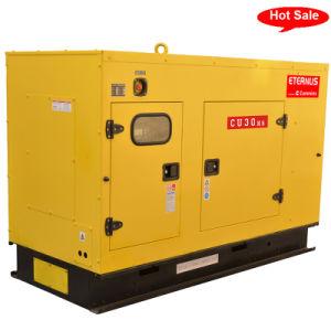 Accueil Utilisation du Générateur Diesel De type silencieux (BU30KS)