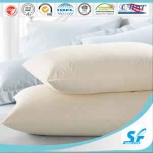 Пуховые/ Вниз квадратных пуховые подушки сиденья вставьте опорный